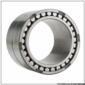 FAG NU313-E-M1-C3 Cylindrical Roller Bearings