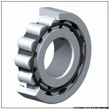 65 mm x 140 mm x 33 mm  FAG NU313-E-TVP2 Cylindrical Roller Bearings