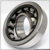 90 mm x 140 mm x 24 mm  FAG NU1018-M1 Cylindrical Roller Bearings