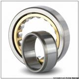 FAG NU1026-M1-C3 Cylindrical Roller Bearings