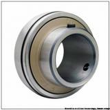 INA IR45X50X25 Needle Roller Bearing Inner Rings